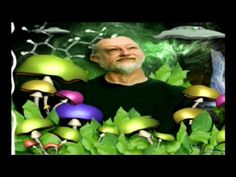 Dennis Mckenna - Shamanism, Consciousness, and the future of Psychedelics