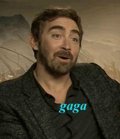 Hey Lee, my bo*bs your beard, ok? *gif*