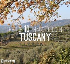 Top 10 Things to do in Tuscany, Italy - Extra Pack of Peanuts