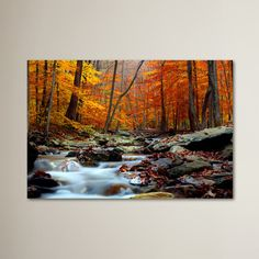 Found it at Wayfair - Ultimate Truth Photographic Print on Wrapped Canvas