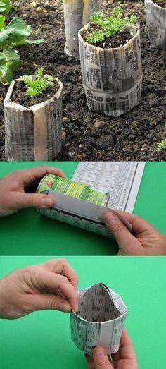 DIY Seed Starting Hacks 4