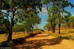 paisagens rurais - Pesquisa Google