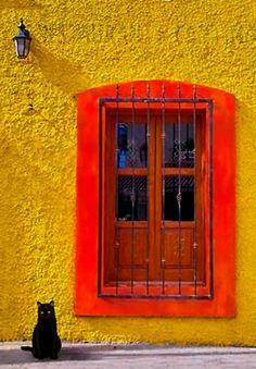 Orange Window, Yellow Wall, Black Cat