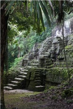 Tikal, Guatemala - mystical - nothing quite like it. It needs to be on everyone's bucket list.