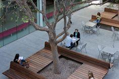great bench detail! hammer museum courtyard by michael maltzen