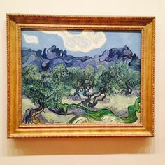 Vincent van Gogh The Olive Trees 1889 Museum of Modern Art Van Gogh Drawings, Van Gogh Paintings, Van Gogh Art, Art Van, Classic Paintings, Great Paintings, Van Gogh Museum, Art Museum, Museum Of Modern Art