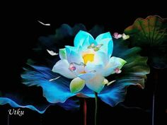Neon Animated Lotus with Butterflies colorful nature flowers butterfly neon lotus flowers for you animated flowers flowers gif Flowers Gif, Butterfly Flowers, Beautiful Butterflies, Flower Art, Animiertes Gif, Animated Gif, Beautiful Gif, Beautiful Roses, Gifs