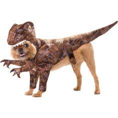 Pet Raptor Animal Planet Sm