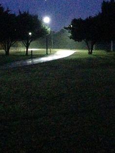 Foggy Evening Walk in Park