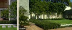 A Pleno Sol - Proyectos - Residencial - Bosques