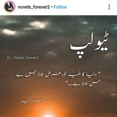 Urdu Quotes, Quotations, Best Quotes, Funny Quotes, Life Quotes, Novels To Read, Best Novels, Sad Words, Deep Words