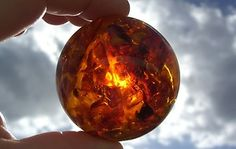 baltic amber fossil sphere, gotta get me one of these!!!