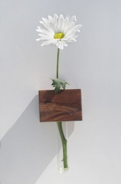 Flower Vase & Refrigerator Magnet by Meriwether | Meriwether of Montana