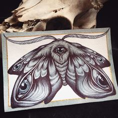 A new piece I added to my Storenvy shop, I finished this painting last night.one of my favorite subjects to draw in the night when I can't sleep, many eyed moths. In my store today at www.caitlinhackett.storenvy.com