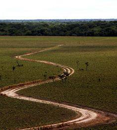 Parque Santos Luzardo, el cuarto más grande del país, Edo. Apure. Venezuela