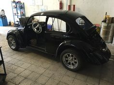 Black käfer