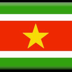 SurinameStore