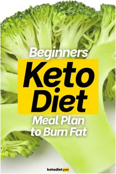 Kickstart your weight loss and get into ketosis fast with our super-easy 19-day keto diet meal plan for beginners. Lose weight and improve your health!