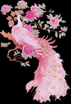 PINKPEACOCK.gif pink peacock image by wanderra