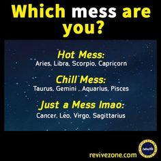 mess, zodiac signs, aries, taurus, gemini, cancer, leo, virgo, libra, scorpio, sagittarius, capricorn, aquarius, pisces