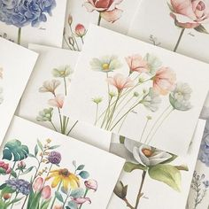 Korean illustrator Kate Kyehyun Park shares her drawing tips on how to draw a flower in 3 simple steps. Mauricioaedo An artist reveals how to draw perfect flowers in 3 simple steps Art - Flower Drawing Tutorials, Watercolour Tutorials, Watercolor Techniques, Art Tutorials, Flower Art Drawing, Botanical Drawings, Botanical Illustration, Botanical Art, Watercolor Drawing