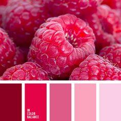 burdeos, color caramelo de azúcar, color lila, combinación de colores, elección del color, lila pálido, paleta de colores, rojo, rojo oscuro, rosado claro, rosado vivo, tonos lilas, tonos rosados.