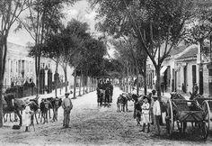 """Año 1909 LA VIEJA SULTANA DEL AVILA. EL BULEVAR DE LA PASTORA, SUS CARRETAS DE MULAS Y EL TRANVIA TIRADO A CABALLO... Esta es otra entrega de nuestra corresponsal Laura Llanos: """"Se estima que para el año 1900 Caracas no llegaba a alcanzar los 70.000 habitantes siendo más bien una población rural integrada por las parroquias urbanas tales como Catedral, Santa Teresa, Santa Rosalía, Candelaria, San José, La Pastora, Altagracia, San Juan y las foráneas de El Recreo, El Valle, La Vega…"""