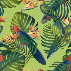 Birds of Paradise by Cathrin Gressieker - - tropical jungle design of parrots, strelitzia and foliage- combination of vintage bird and strelitzia illustrations Tropical Prints, Palm Fronds, Vintage Birds, Green Backgrounds, Original Artwork, Print Patterns, Plant Leaves, How To Draw Hands, Paradise