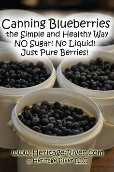 Canning Blueberries the Simple and Healthy Way – Heritage River LLC Home Canning Recipes, Canning Tips, Cooking Recipes, Blueberry Recipes For Canning, Blueberry Preserves Recipes, Pressure Canning Recipes, Jam Recipes, Pressure Cooking, Salad Recipes
