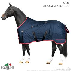 Coperta Box Equiline Otis My Horse, Horses, Horse Rugs, Pretty, Animals, Boxing, Animales, Animaux, Horse