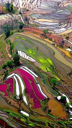 Longji, China... land art landscape photography