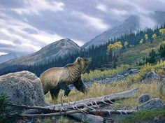SEEKING SERENITY - grizzly bear painting by Al Agnew
