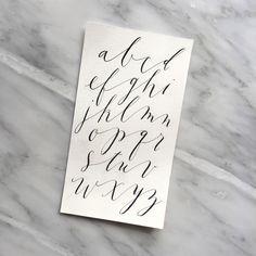 Palomino   alfabeto caligrafía contemporánea 2015