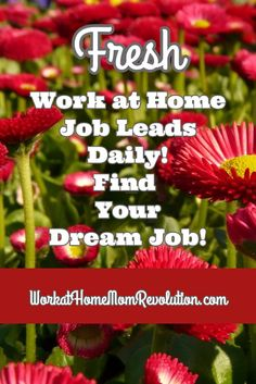 Fresh Work at Home Job Leads Daily! Find Your Dream Job! This is a list of fresh work from home job leads published several times per week on Work at Home Mom Revolution, a home-based job site for moms! You can make money from home! WorkatHomeMomRevolution.com
