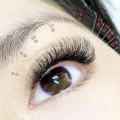 Eyelash Studio, Eyelash Salon, Eyelash Extensions Styles, Wispy Lashes, Beauty Lash, Beautiful Eyelashes, Best Lashes, Longer Eyelashes, Eye Make Up