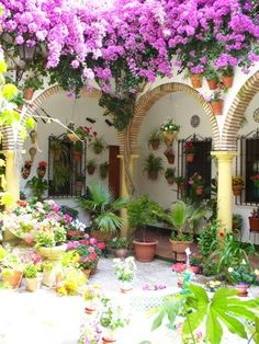 Leve-me para si us plau! Beautiful Gardens, Beautiful Flowers, Beautiful Places, Bougainvillea, Outdoor Rooms, Outdoor Gardens, Spanish Garden, Spanish Style Homes, Spain And Portugal