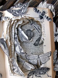 Buchkunst Mayberry's Insects Book Sculpture by Kelly Campbell Top 10 Ways To Prevent Obesity In Kids Book Crafts, Arts And Crafts, Paper Crafts, Tunnel Book, Altered Book Art, Book Folding, Book Projects, Clay Projects, Project Ideas