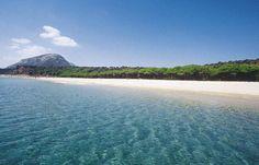 Per chi ama i villaggi polivalenti con tutta la qualità e la cura del gruppo Iti Hotels, benvenuti al Marina Resort club http://www.playviaggi.com/club-hotel-marina-resort-orosei/
