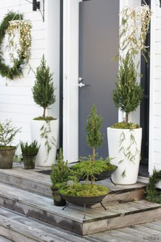 KUKKALA #sisäänkäynti #entrance Garden Park, Garden Shop, Terrace Garden, Dream Garden, Container Flowers, Container Plants, Container Gardening, Pergola Lighting, Outdoor Pergola