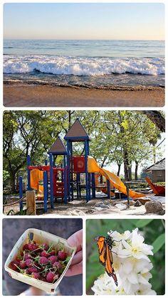 A summer bucket list for kids!
