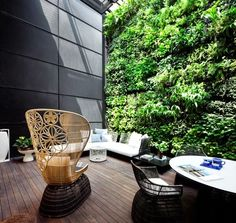 Outdoor space and great chair