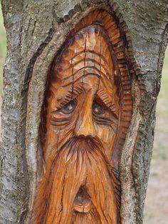 tree carving by theharv58, via Flickr