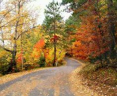 Road I'd like to walk down