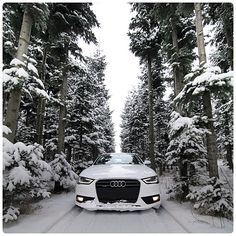 awesome There is nothing quite like playing in a # in the woods, in the snow! It r … Audi 2017 See more at carsboard. Audi A6, Audi 2017, Dream Cars, Dream Big, Audi Sedan, Allroad Audi, Car Goals, Limousine, Car Car