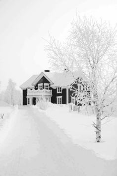 Winter Szenen, Winter Love, Winter Magic, Winter White, Snow White, Winter Light, Winter Socks, Winter Trees, Winter Nails