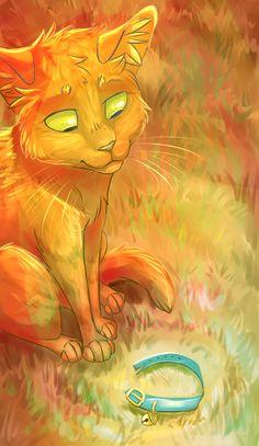 Fur like Fire by Finchwing.deviantart.com on @DeviantArt
