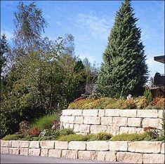 Construire votre maison sur un terrain en pente - Choisirmoncontructeur.com Landscaping, Sidewalk, Stone, Wall, Ideas, Gardens, Civil Engineering, Build Your House, Garden Landscaping