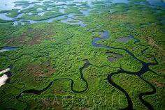 Wetlands aerial, Mangrove estuary system, Everglades National Park, Florida