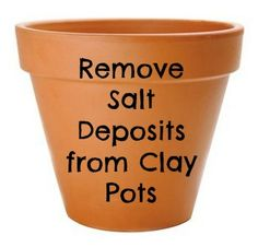How to Remove Salt Deposits from Clay Pots