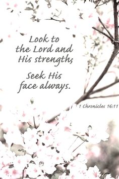Seek Adonai and His strength. Seek His face always. 1 Chronicles 16:11